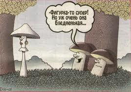 Грибочки-то разные бывают! )))